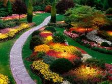 beautiful garden divorce mediation benefits